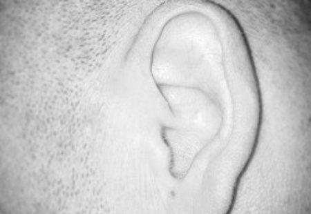 Ein offenes Ohr haben